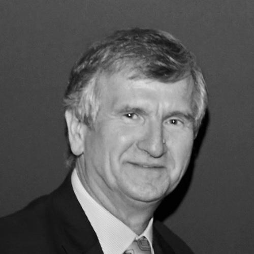 Professor Milan Brandt